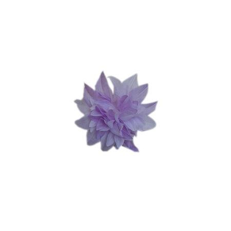 imagenes_web_0003s_0000s_0008s_0000_AF25A_Med 1 crisantemo lila