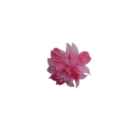 imagenes_web_0003s_0000s_0008s_0001_AF25A_Med 1 crisantemo fucsia